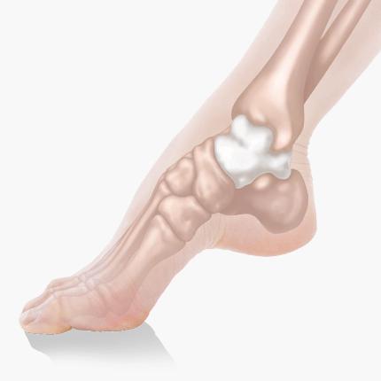 足を中心の考えてた独自理論を講義